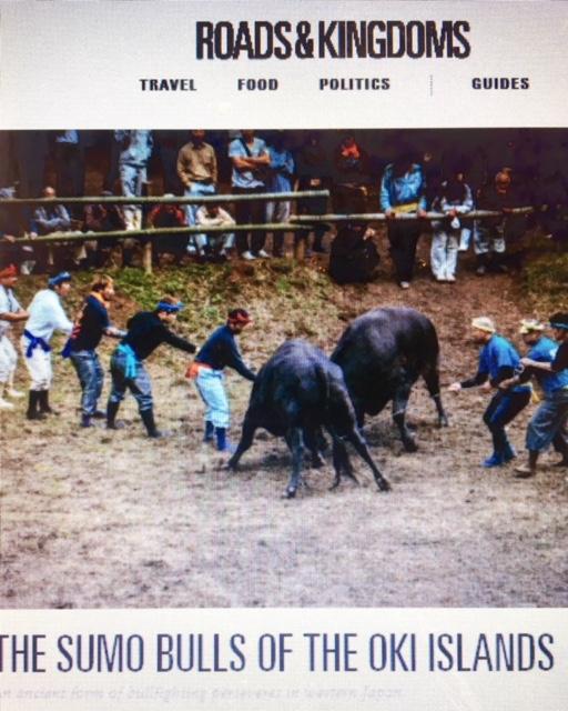Sumo Bulls of the Oki Islands